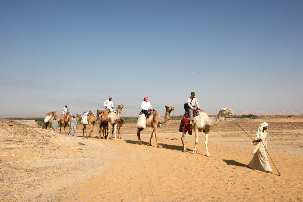 Camel Caravan With Lunch